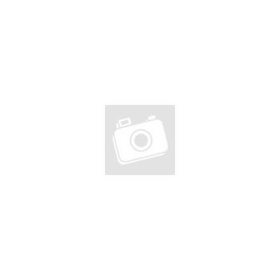 Elektromos főkapcsoló tábla - utánvilágító